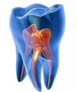 clinica odontoiatrica 1
