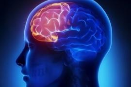 5 esercizi per migliorare la memoria